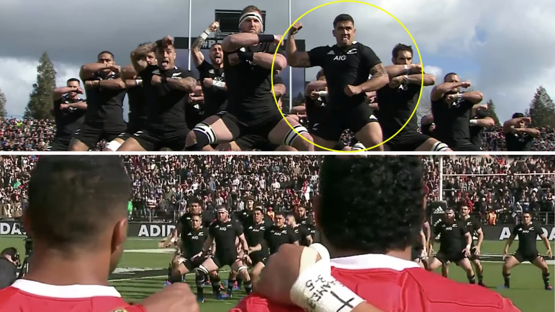 Lots of people are talking about the haka between New Zealand and Tonga