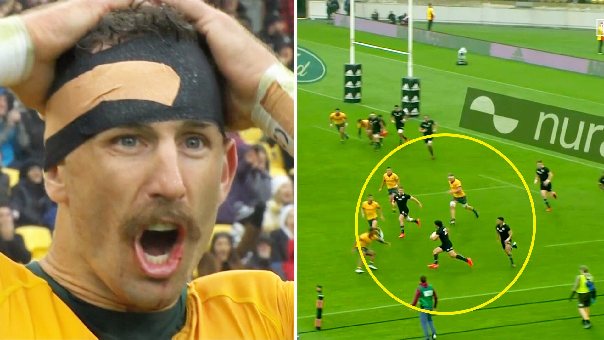 WATCH: One of the greatest test matches ever as resurgent Australia draw with All Blacks in epic finish in Wellington