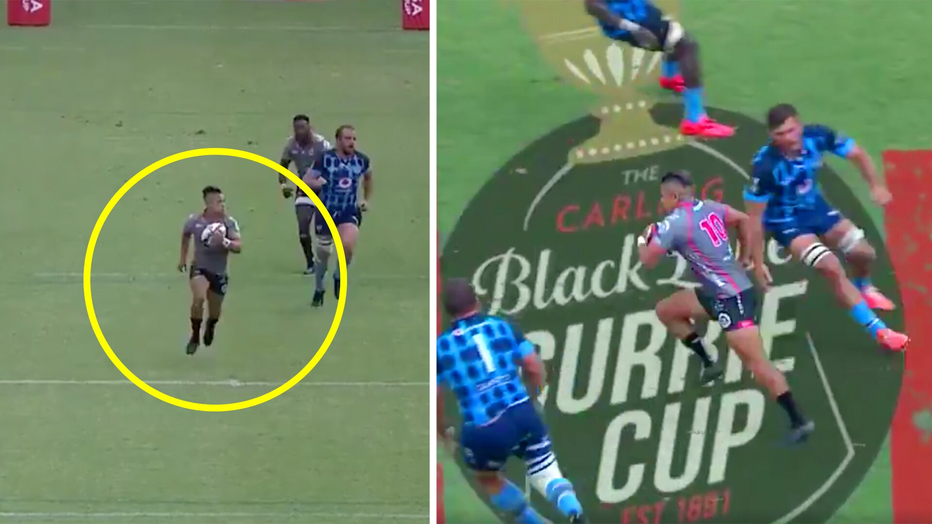 Fans calling on Super Rugby clubs to sign Devon Williams after stunning solo try in Currie Cup